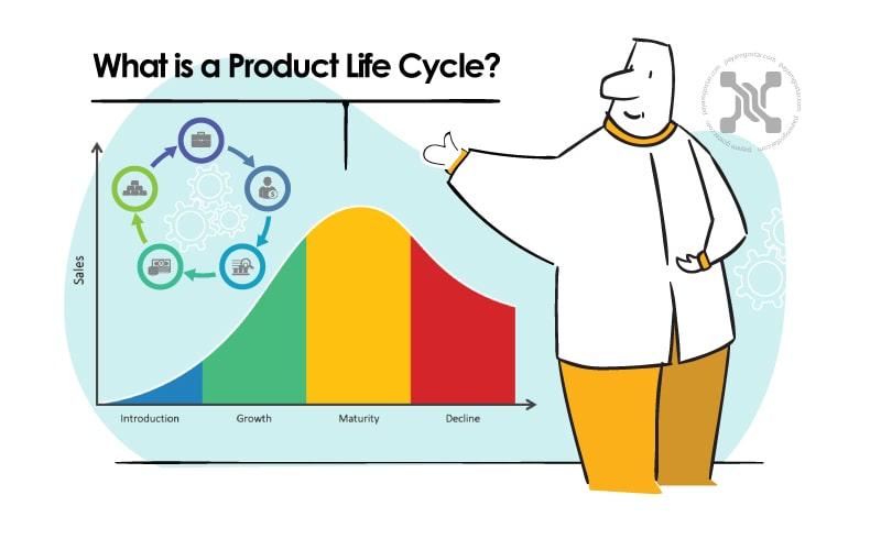 چرخه عمر محصول عبارت است از مدت زمانی که یک محصول از عرضه به بازار تا خروج از قفسه ها میگذراند .